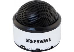 Портативная акустика Greenwave PS-300M silver-black
