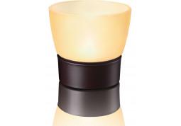 Настольная лампа Philips Retreat 31008 фото