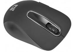 Мышь Defender Datum MM-075 (черный) фото