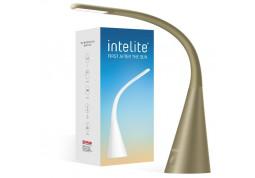Настольная лампа Intelite DL4-5W (серый) фото