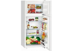 Холодильник Liebherr CTPsl 2121 - Интернет-магазин Denika