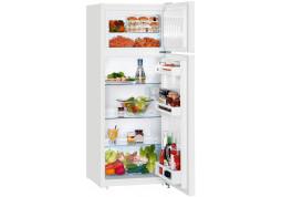 Холодильник Liebherr CTP 2521 - Интернет-магазин Denika