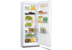 Холодильная камера Snaige C31SM-T10022 недорого