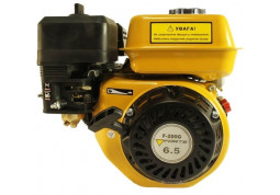 Двигатель Forte F200G - Интернет-магазин Denika