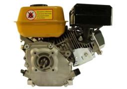Двигатель Forte F200G описание