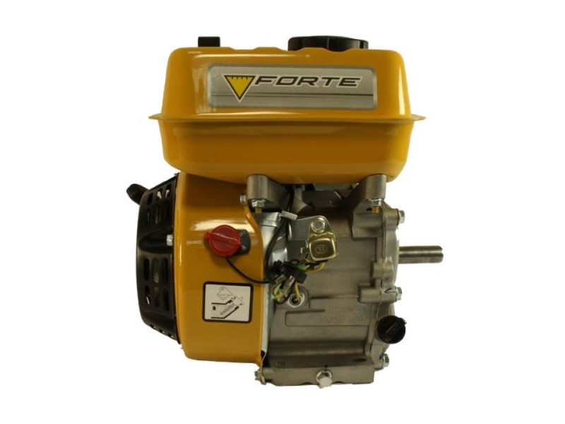 Двигатель Forte F200G фото