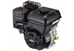 Двигатель Briggs&Stratton BS750