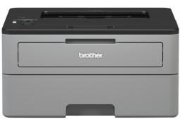 Принтер Brother HL-L2352DW - Интернет-магазин Denika