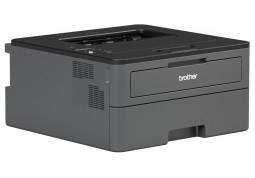 Принтер Brother HL-L2372DN (HLL2372DNYJ1) в интернет-магазине