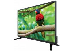 Телевизор MANTA LED320E10 отзывы