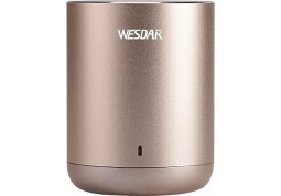 Портативная акустика Wesdar K23 Gold