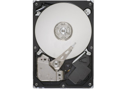 Жесткий диск Seagate ST3320311CS