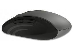 Мышь Rapoo MT350 цена
