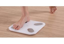 Весы Picooc Mini описание