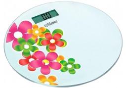 Весы Maestro MR-1825