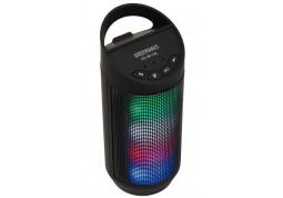 Портативная акустика Greenwave PS-SO-34L Gray (R0014183) - Интернет-магазин Denika