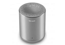 Портативная акустика Wesdar K23 Grey
