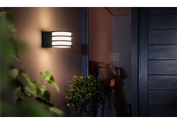 Смарт-светильник Philips Lucca wall lantern anthracite 1x9.5W 230 (17401/93/P0) цена