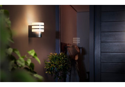 Смарт-светильник Philips Tuar wall lantern inox 1x9.5W 230V (17404/47/P0) дешево