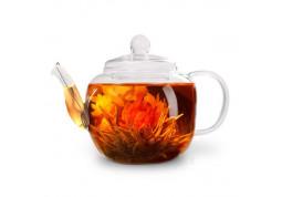Заварочный чайник Fissman Lucky 0.8 л (9359)