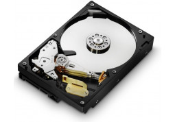 Hitachi Deskstar 7K1000.C HDS721010CLA332