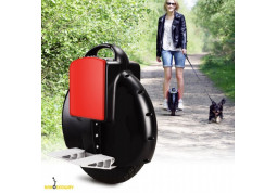Моноколесо Airwheel X3 170 WH недорого