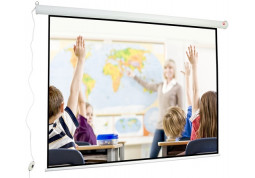 Проекционный экран Avtek Wall Electric 4:3 240